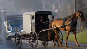 Amish man starts ridesharing business with horse and buggy