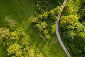 Driverless Car Technology Could Help Find Unmarked Graves | Innovation
