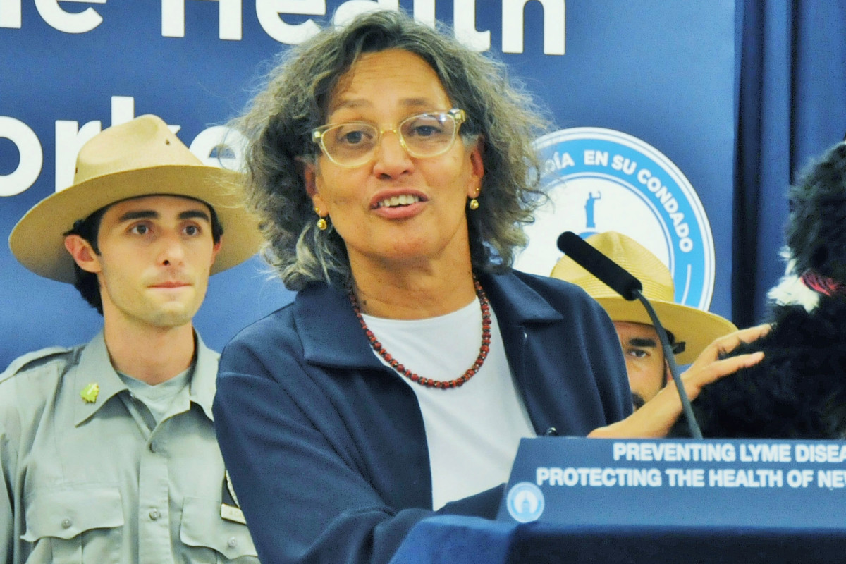 NYC health commissioner Mary Bassett stepping down to join Harvard
