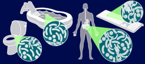 What Does Space Travel Do to Your Gut Microbes? (Video)