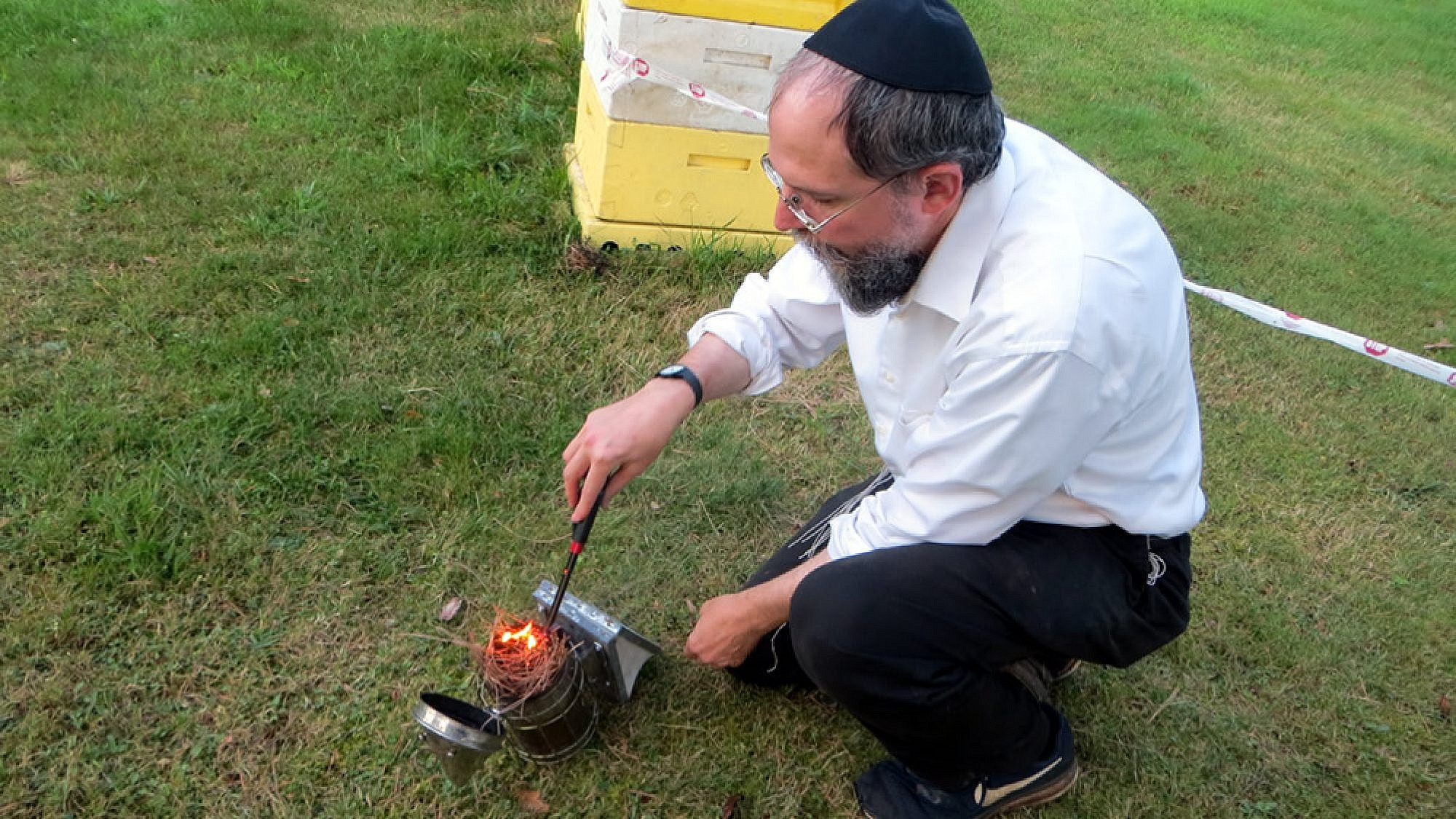 A bee-keeping rabbi explains what the buzz is all about