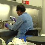State Health Laboratory to begin testing for novel coronavirus - Hawaii News Now