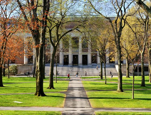 Commentary: Use Pandemic to Rein in Higher Education Costs
