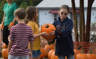 101 Things to do in Aiken County this fall - Charleston Post Courier