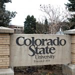 CSU sees 12% drop in freshman enrollment during pandemic, but online education surging