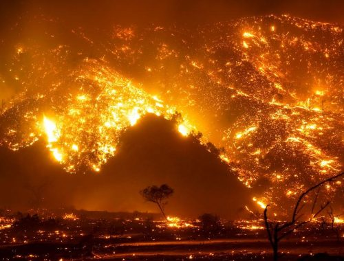 Climate crisis: 2020 was tied for the hottest year ever recorded