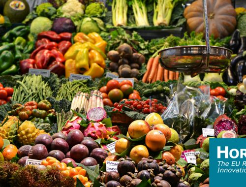 Q&A: Why shorter isn't necessarily better when it comes to food supply chains | Horizon: the EU Research & Innovation magazine