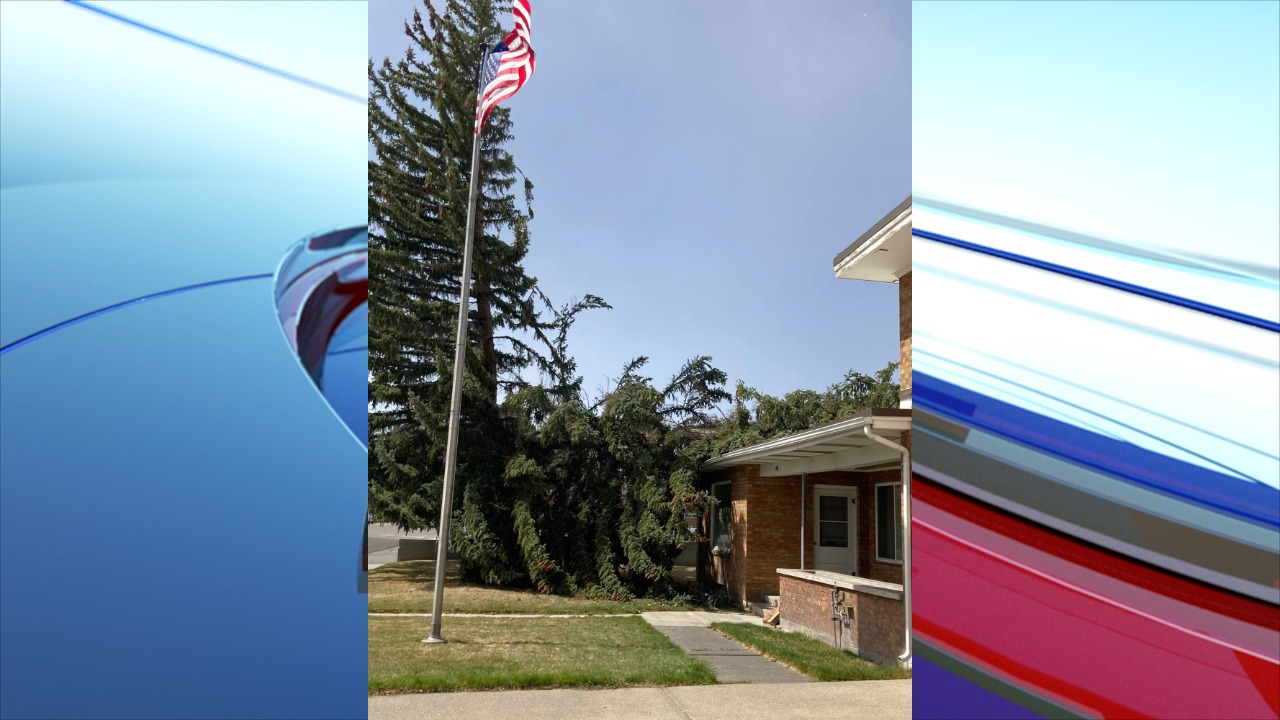 Wind gusts cause havoc across region